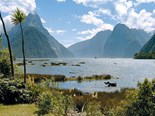 Destinations: on the road to Milford Sound