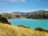 Road trips: exploring Akaroa and Banks Peninsula