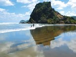 Best beaches on Auckland's west coast