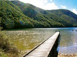 Favourite walks: Lewis Pass Scenic Reserve