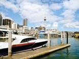 Auckland: exploring the heart of the city