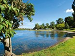 Things to see and do in Waikato