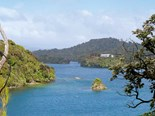 Discovers the beaches, bushwalks, and birdlife in Stewart Island
