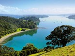 Check out Mahurangi Harbour and the great little bays you can explore in your kayak