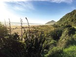 Summer walks around Karamea