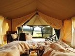 New glamping tents in Auckland