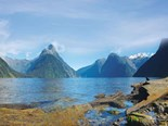 Making the most of Milford Sound