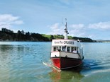 Discovering the Kaipara harbour