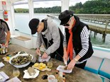 Catching oysters on-board Shuckle Ferry Tours