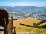 Jackie's Journey: The Wither Hills in Blenheim