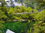 Star Treks: New Zealand's Great Walks