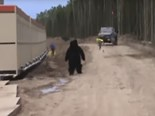 Video: Construction site bear prank
