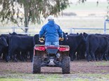 Vic deaths spark farmer safety concern