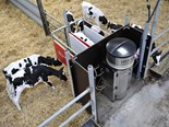 Lely Calm Control calf feeder unveiled