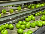 Aussie tech weeds out rotten apples