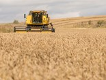 9 tips for buying a combine harvester