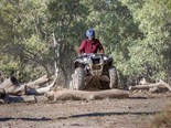 The Yamaha Kodiak 450 ATV's ergonomics are nice and a big seat is comfy on fat bums. Nice low speed engine response enables the operator to crawl over obstacles. There's no diff lock