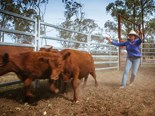 Agriculture still Australia's most dangerous industry
