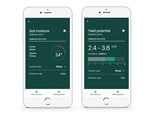 CSIRO's Graincast app can forecast grain yield