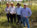 Rice focus for northern Australia project