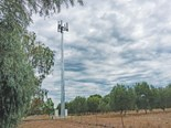Another 2,000 mobile towers needed for precision farming