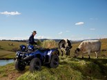 ATV, UTV sales soar in 2020