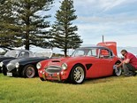 Reader ride - Austin Healey 6000