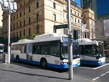 """The light rail is a great way to get across the CBD and over to Randwick, but it only works alongside an expanded bus network that still takes commuters from across the Eastern Suburbs all the way into the city,"