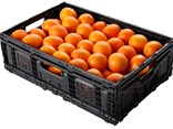 Oranges at half time: Brambles' Chep Asia Pacific performed well in the first half despite the loss of a major RPC contract