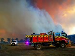 A catastrophic fire danger has been issued. Image: NSW Rural Fire Service image