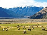 Grand scenery on the Canterbury side of the Southern Alps