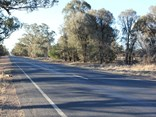 A narrow section of the Newell Highway