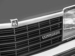 Holden Commodore grille