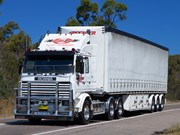 Used Truck Review: Scania 113