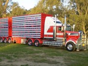 LBRCA enters new partnership with Truck Art Livestock Trailers