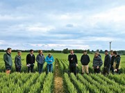 Event: Foundation for Arable Research Tour