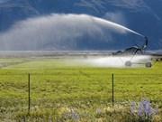 Farm advice: Getting the most out of your irrigator in challenging conditions