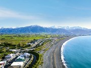 Explore the South: Kaikoura