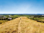 Exploring the township of Puketapu