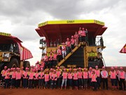 Roy Hill paints its trucks pink for breast cancer awareness