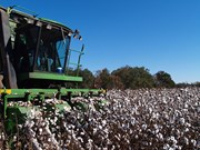 Top 10 safety tips for cotton growers