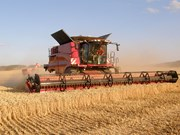 NewCase IH Axial Flow 250 series launch