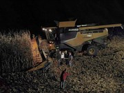 Claas Lexion breaks corn harvesting record