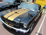 1966 Shelby Hertz Mustang - Reader Ride
