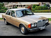1985 Mercedes-Benz 230E W123- Today's Tempter