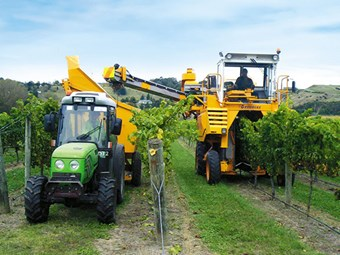 Contractor profile: Brookfield Vine Services
