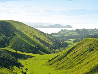 Destinations: Awhitu Peninsula