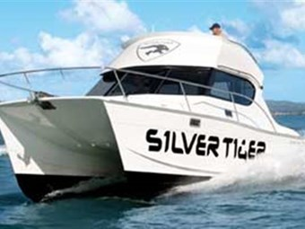 Silver Tiger ST975