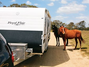 Royal Flair Caravans Aussiemate