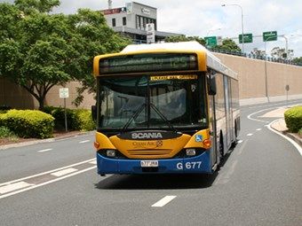 Bus bunfight in Brisbane